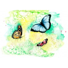 Print - Butterflies by Claire Mckinnell