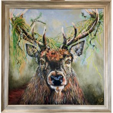Framed Art - Bad Hair Day by Jan Pavey
