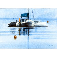 Print - Trimarn by Ken Young
