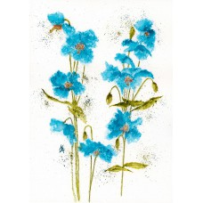 Print - Himalayan Poppies by Nancy Aitken