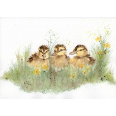 Card - Three Little Chicks by Nancy Aitken