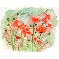 Print - Poppies by Nancy Aitken