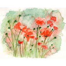 Print - Poppies by Nancy Aitken
