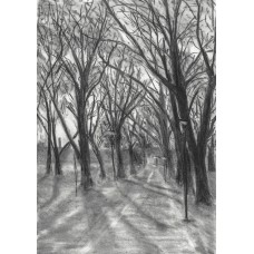 Print - Middle Meadow Walk by Sam Coull